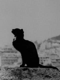 Athènes,Anafiotika