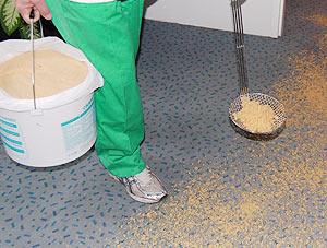 2 Cara Mencuci Karpet yang Benar Agar Tetap Bersih