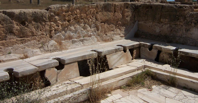 Roman toilets gave no clear health benefit, and Romanisation actually spread parasites