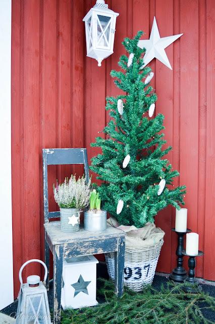 koti, talo, joulunodotus lumi talvi joulu kuusi asetelma sisääntulo
