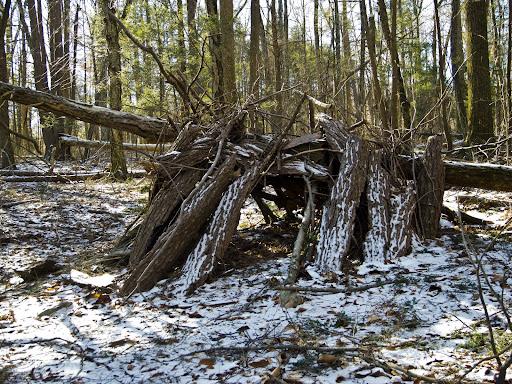 An Improvised Shelter along The Paugusett Trail in Shelton CT