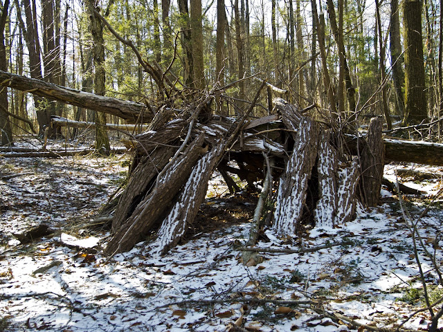 An Improvised Shelter along The Paugusett Trail in Shelton CT