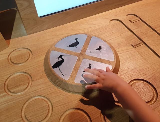 Im Watt in Dänemark: Unser Besuch im Vadehavscentret samt Wattenmeer-Tour. Als Familie haben wir mit Vogelstimmen einen Song komponiert.