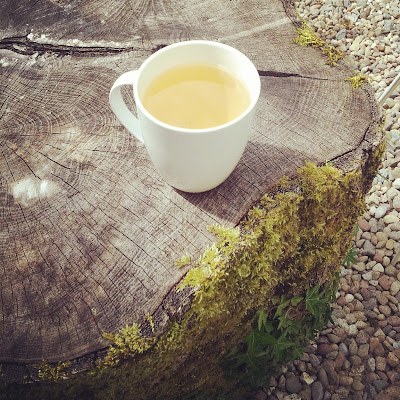 A cup of herbal tea at the Burren Perfumery's Café. Photo by Elena Rosenberg.