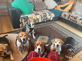 Hank, Spot, Cooper, Snoopy, Lilly, Macy and Lucy.