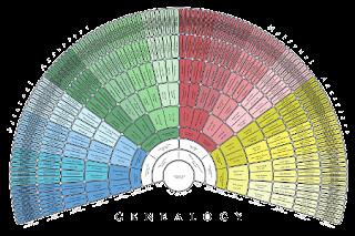 Genealogický vějířovitý diagram předků - šablona