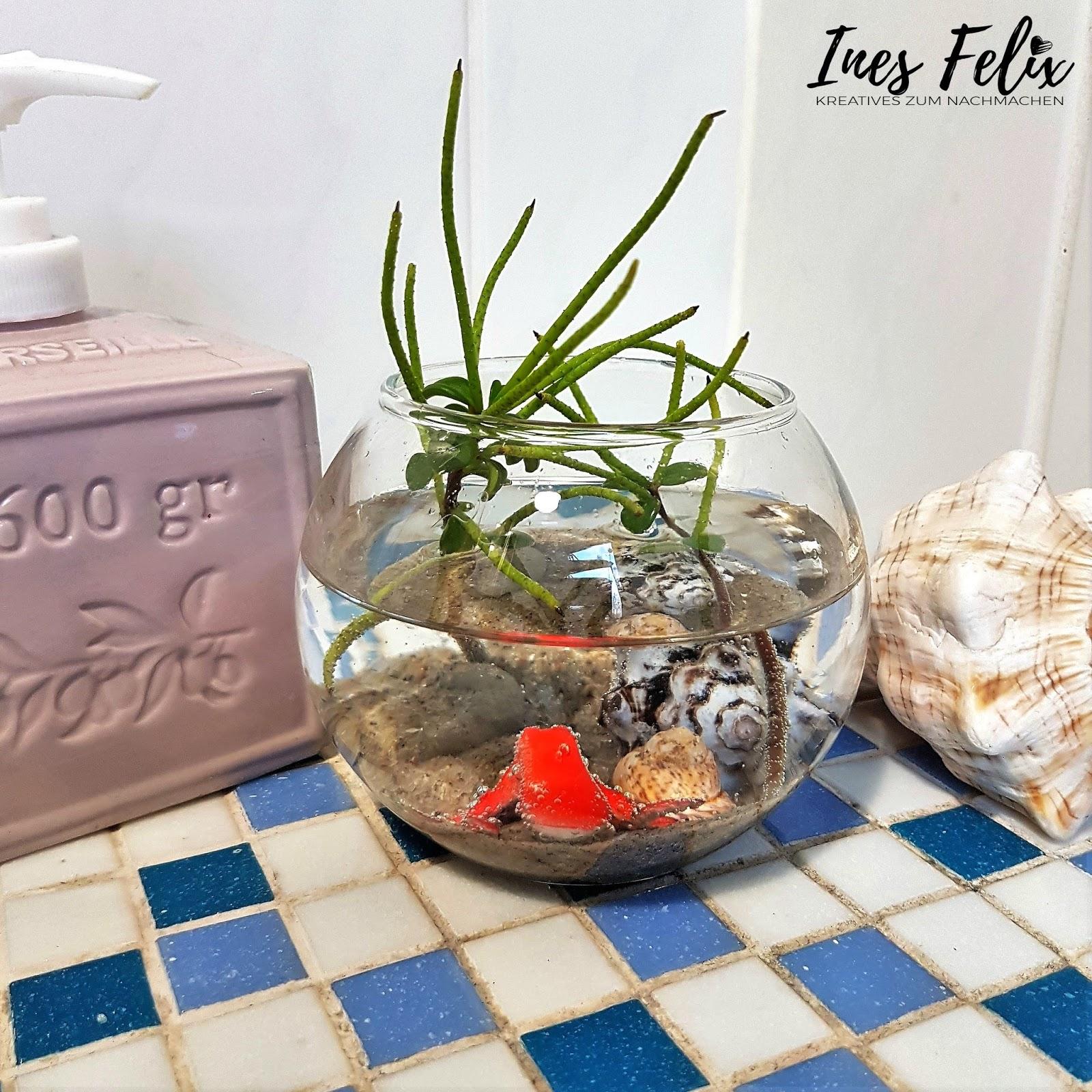 Überall Im Haus Stehen Diese Kleinen Dekorationen Herum, Die Man Jederzeit  Umbauen Und Umdekorieren Kann   Einfach Wunderbar. Ganz Neu In Unserem  Badezimmer ...