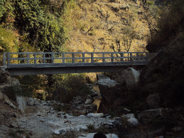 tiger fall bridge