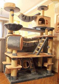 cool cat tree plans cool cat tree plans don 39 t work. Black Bedroom Furniture Sets. Home Design Ideas