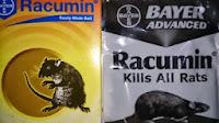 racun tikus, racumin, bahan beras, tikus mati, tidak berbau