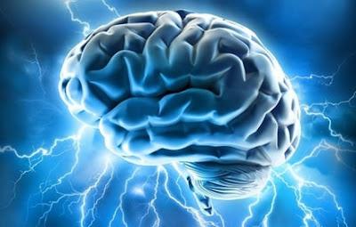 Apprendre une langue étrangère c'est bon pour le cerveau - Selectividad Andalucía 2015 francés
