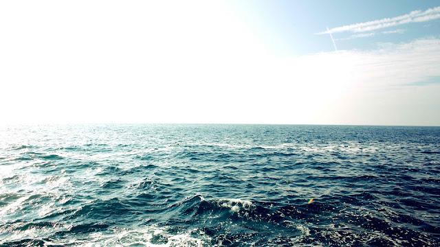 Expanding 'Dead Zone' in Arabian Sea Raises Climate Change Fears
