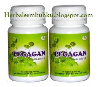 PEGAGAN kapsul obat herbal sroke Surabaya | 085755201000 | regenerasi sel dan nutrisi otak untuk kecerdasan anak