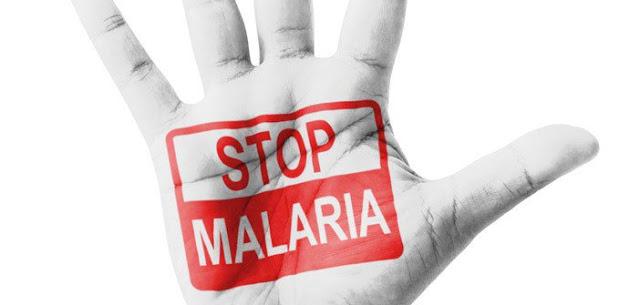 El Ministerio de Salud ni se inmuta ante las alertas sobre proliferación de la malaria