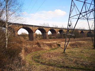 A long, level viaduct in the middle distance, showing 9 of its arches, with a flat expanse of grass and a modern electricity pylon in the foreground.