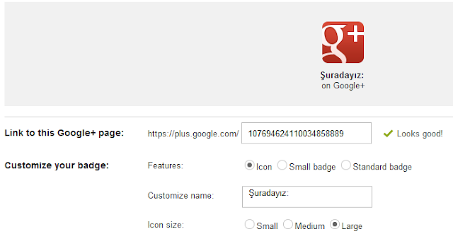 Google + Badge Rozeti