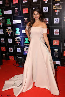 Bollywood Celebrities on the Red Carpet Of Zee Cine Awards 2017 Exclusive 059.JPG