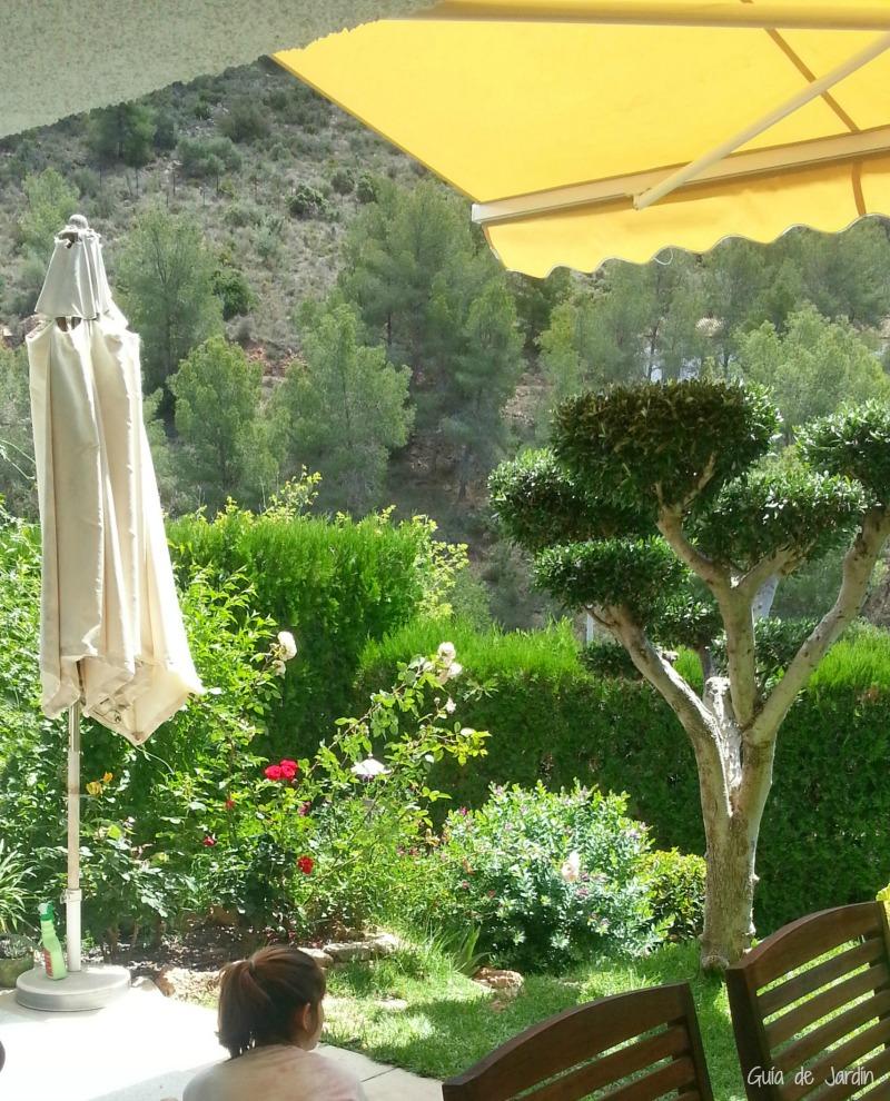 Cómo elegir un buen toldo para la terraza - Guia de jardin