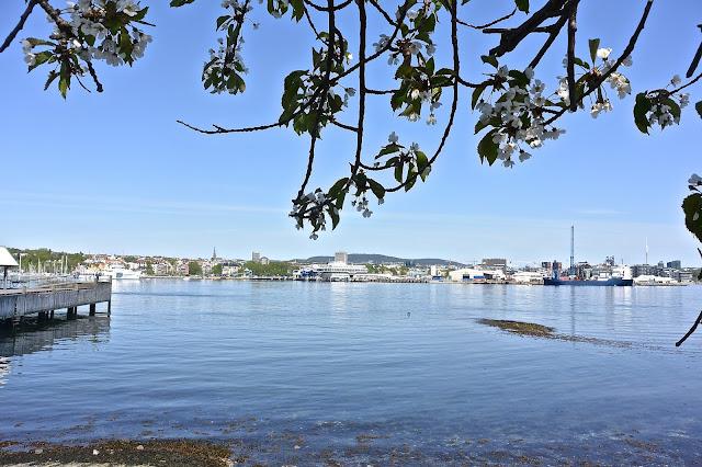 Norvège Port d'Oslo vu de la  presque-île de Bygdoy Musée du Fram