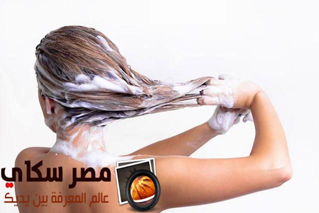طرق نظافة الشعر الدهنى والجاف وعوامل إفساد نموه Hair cleaner