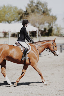 A light chestnut hunter horse being ridden at a show