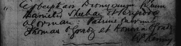 Baptism record Denis Sheehan 1866 Limerick, Ireland  http://jollettetc.blogspot.com