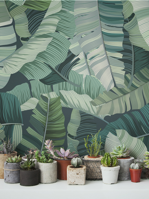 Tropical fever...On the walls!
