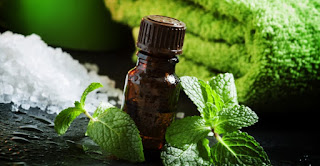 Essential Oils For Hair Growth Fast 2018