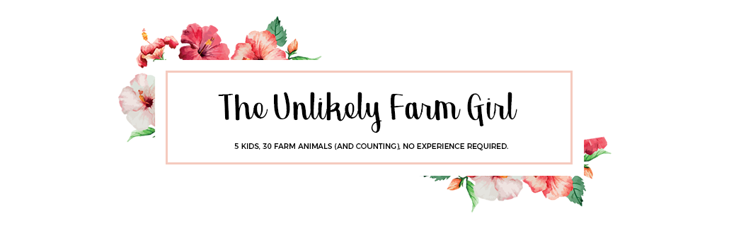 The Unlikely Farm Girl