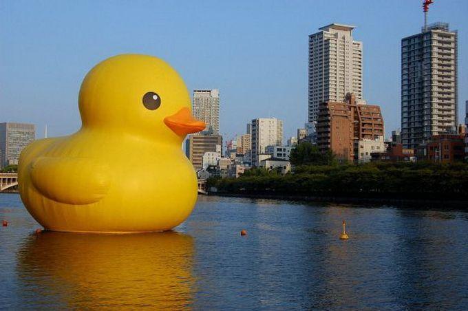 Escultura gigante pato gigante