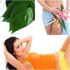 Cara pengobati keputihan dan menghilangkan bau
