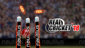 Real Cricket 18 Playing Tips