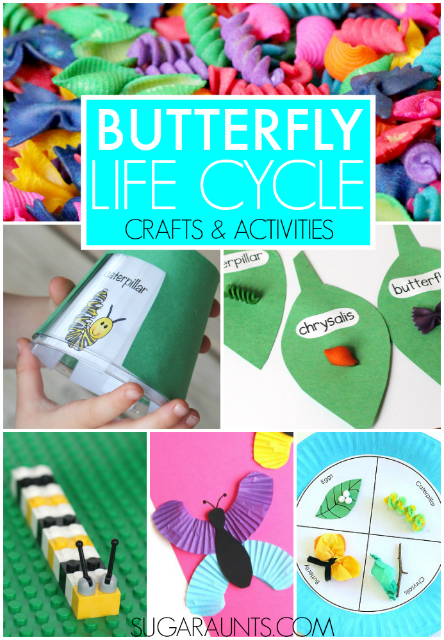 Butterfly Life Cycle Crafts Activities The Ot Toolbox