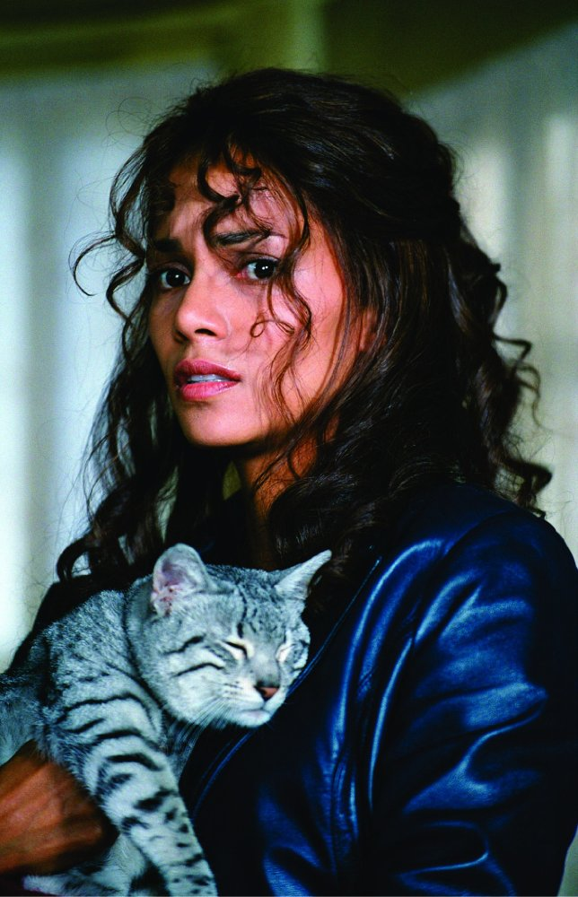 Catwoman 2004 full movie free-3331