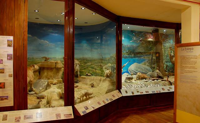 Estrutura do Museu da Patagônia em Bariloche