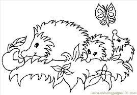 Hedgehog coloring page 7