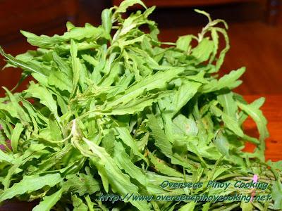 Pasotes, Herb Ingredient for Vigan Pipian