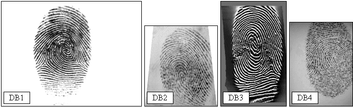 Adventures in the Land of Binaries: Evaluating NIST Biometric Image
