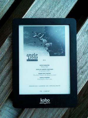 Angle Mort - n°11 - Revue numérique sur liseuse