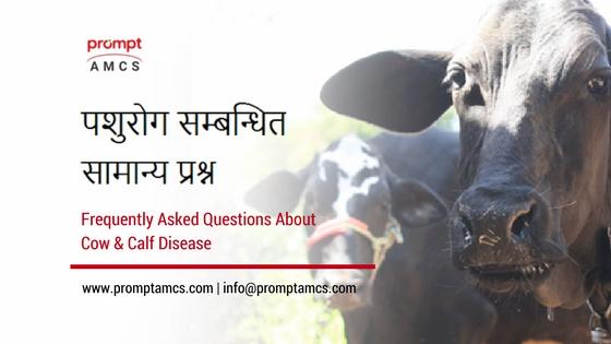 पशुरोग सम्बन्धित सामान्य प्रश्न