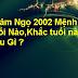 Tuổi Nhâm Ngọ 2002 Mệnh Gì ? Hợp Tuổi Nào Hợp Màu Gì
