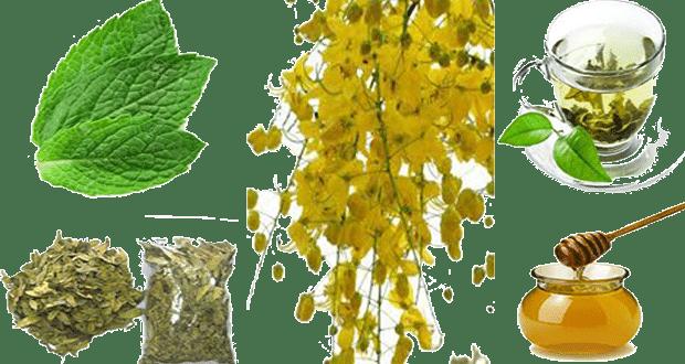 وصفات عشبية لتأخير القذف