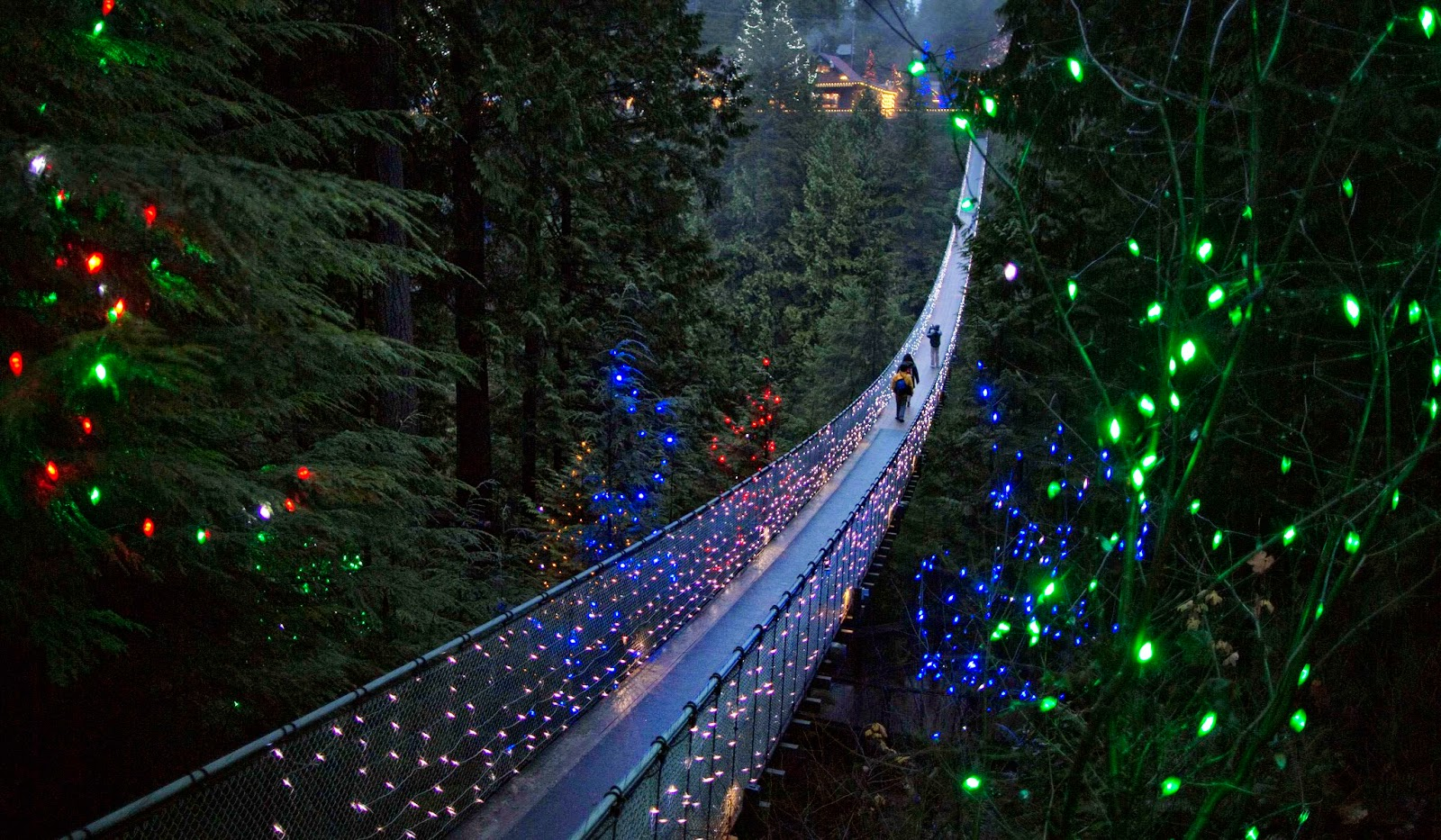 Capilano Suspension Bridge at Night
