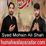 https://www.humaliwalyazadar.com/2018/09/syed-mohsin-ali-shah-nohay-2019.html
