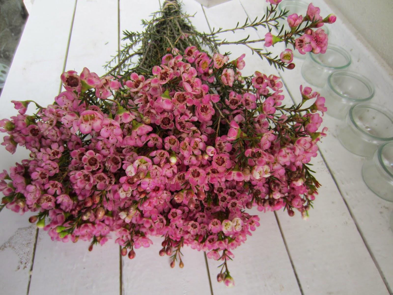 la petite boutique de fleurs bouquet champ tre. Black Bedroom Furniture Sets. Home Design Ideas