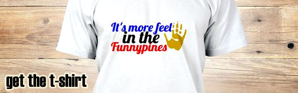 it's more feel in the funnypines t-shirt