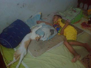 Ataka dan Kucingnya Lagi Tidur