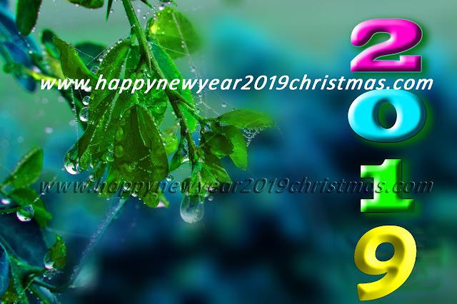 happy new year 2019 dj song