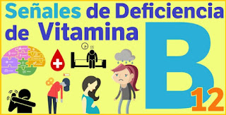 deficiencias por falta de vitamina B12