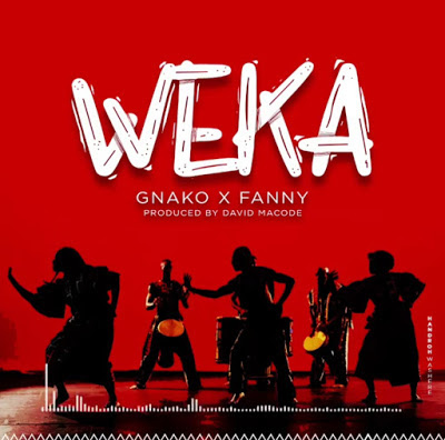 Download Audio: GNako Ft Fany - WEKA | Mp3 | New Song